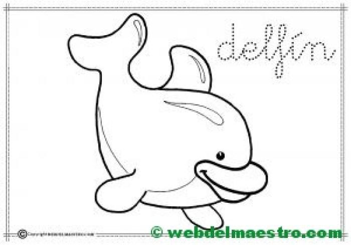 10-delfín