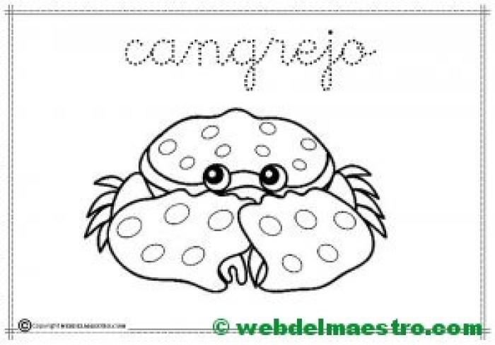 2-cangrejo