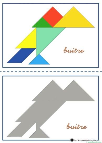 tangram-buitre