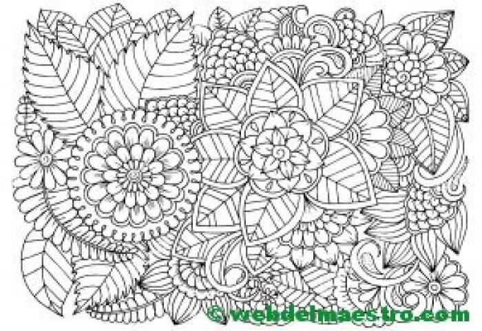 Dibujo de flores para colorear 1