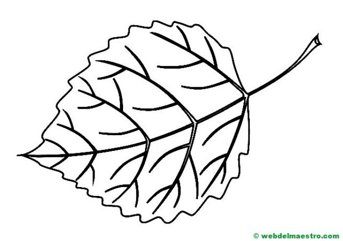 hoja de árbol para colorear-