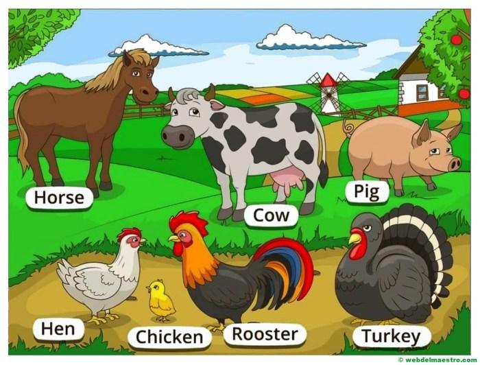 animales de la granja en ingles