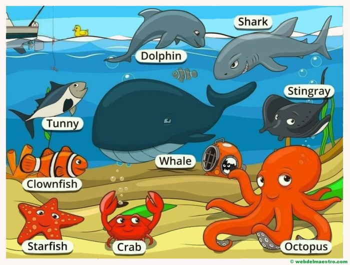 animales marinos en ingles-II