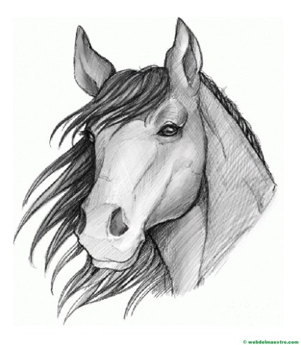 dibujo de caballo a lápiz