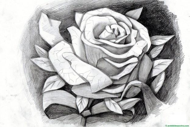 dibujo de rosa a lápiz
