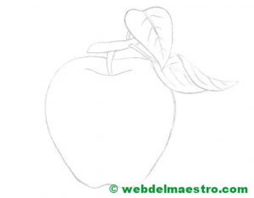 manzana-esbozo