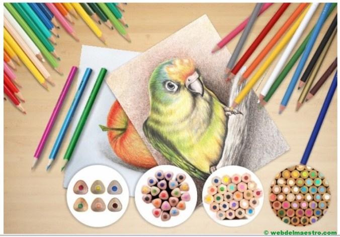 capas de colores