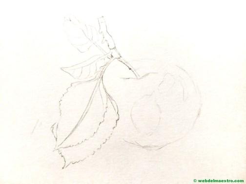 dibujo de manzana-boceto