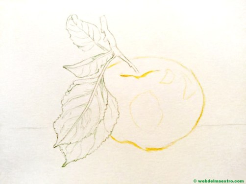 dibujo de manzana-paso 1
