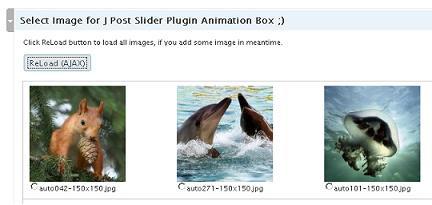 wordpress jquery plugin