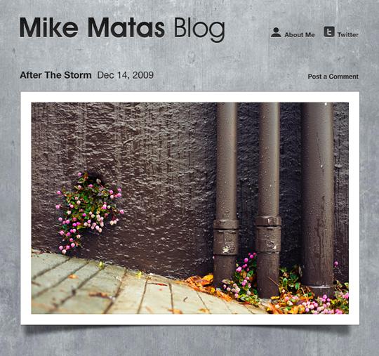 blogs15