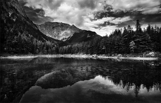 Beautiful black and white nature photography web design ledger beautiful black and white nature photography voltagebd Images