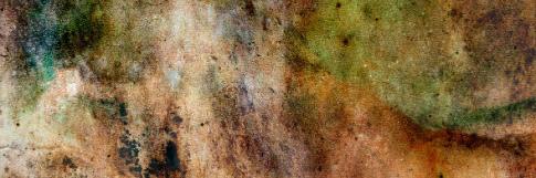 WDL Premium: Colorful Grunge Textures