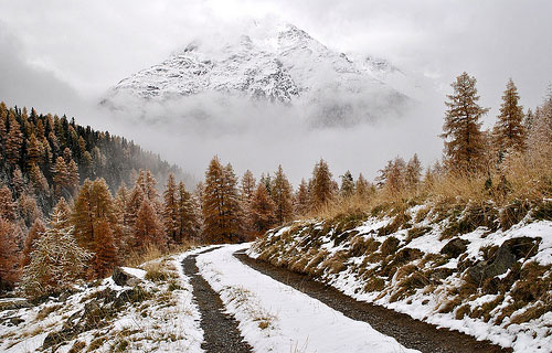 Road to winter