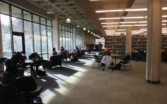 Washington university library reading