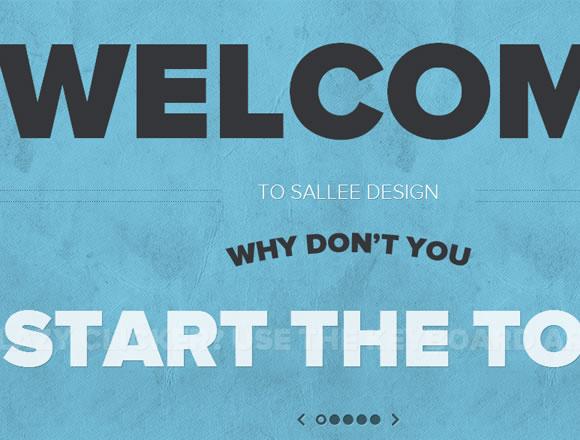 Sallee Design portfolio websites user interface