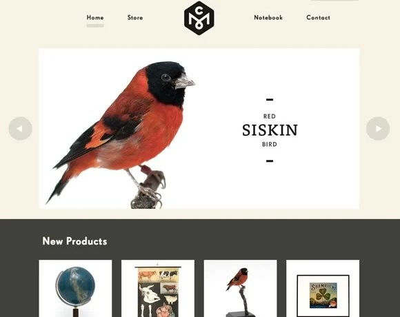 21 Great Examples of Big Images in Web Design