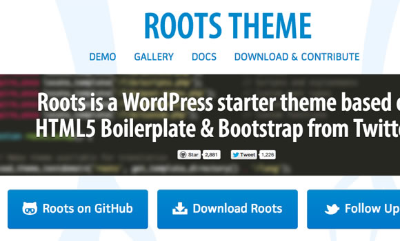 roots open source wordpress theme basics
