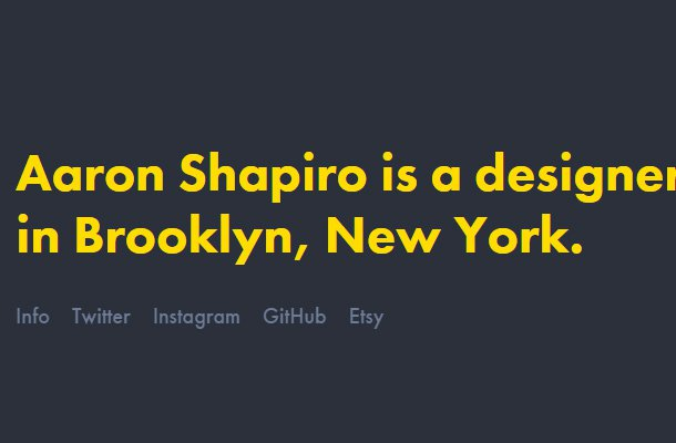 aaron shapiro website portfolio design inspiration