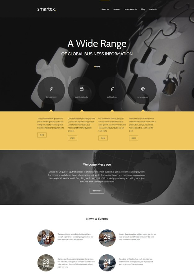 16 wp consulting theme