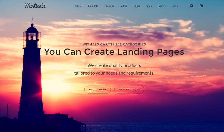 1. modicate-multipurpose-website-template