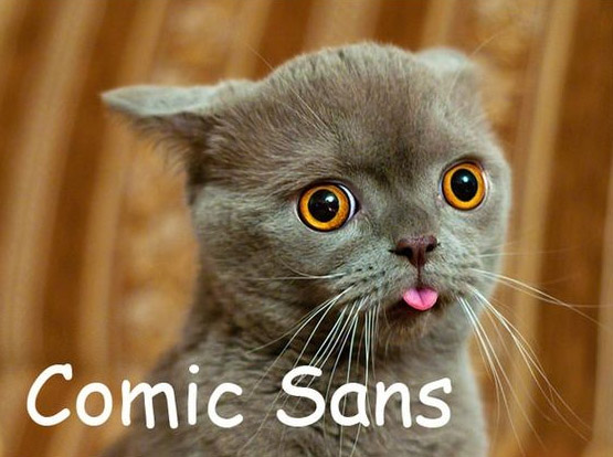 If Fonts Were Cats - Web Design Ledger