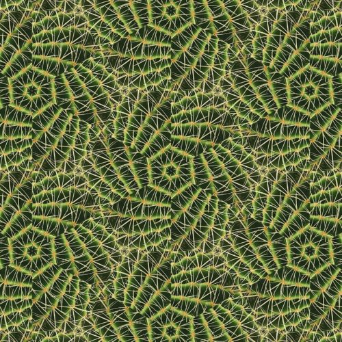 Organic abstract, background pattern featuring a profusion of thorns. Mutant nature, genetic mutation.