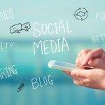 social media , blogging, website promotion, search engine optimization