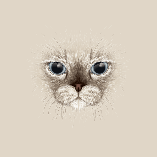 Create a Large Face, Cat Illustration from Stock in Adobe Illustrator