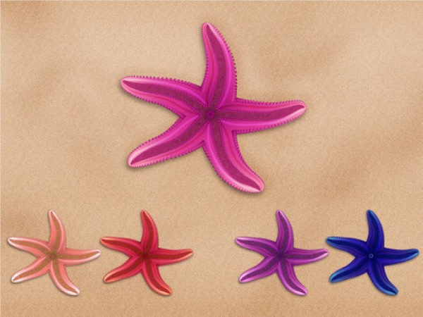 Create a Series of Colorful Vector Starfish