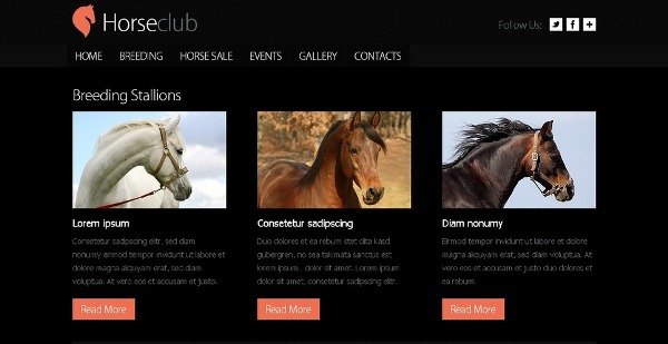 Free Horse Club HTML5 CSS3 Template with Slider
