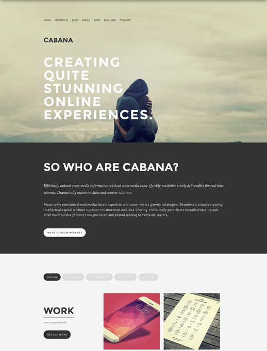 Cabana-Responsive-Creative-WordPress-Theme