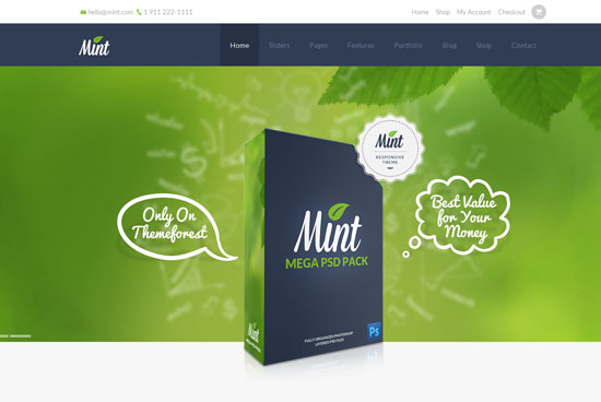 Mint-best-WordPress-theme-2014