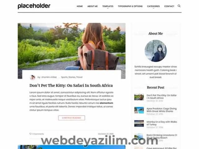 Aari WordPress Teması