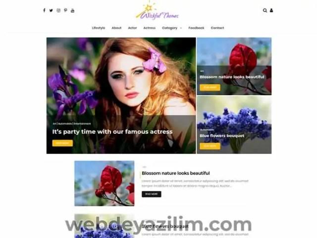 Wishful Blog WordPress Teması