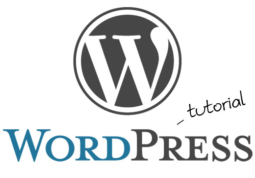 How to Use Your WordPress Website (Beginner Friendly