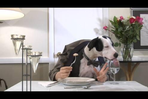 restaurant, Eating Out, 3-4, WebEnglish.se