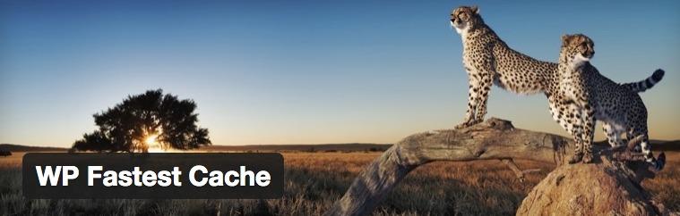 wp-fastest-cache-configurar