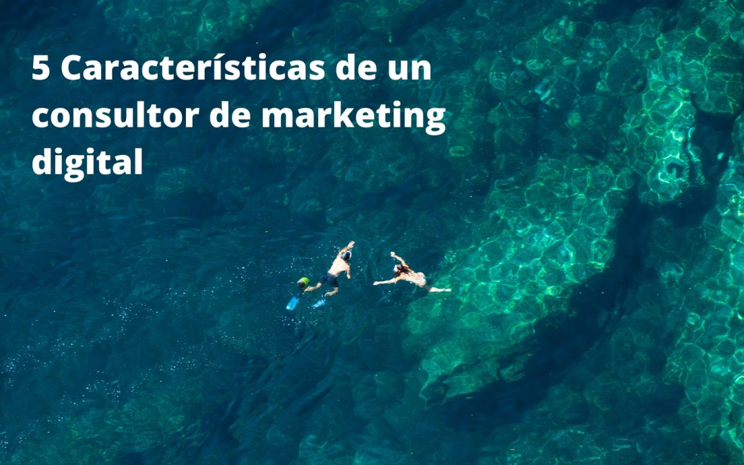 5 Características de un consultor de marketing digital