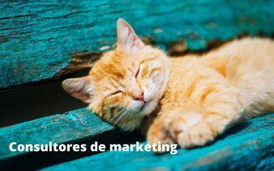 Consultores de marketing, ¿qué pueden hacer por ti y tu empresa?