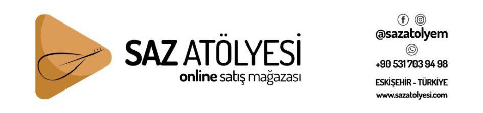 sazatolyesi.com Logo Çalışması Kutu min 1024x240