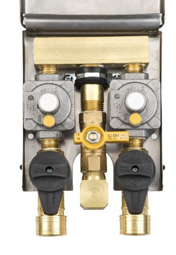 Burnaby Manufacturing G0101-2#DBL-SS Double Gas Plug 2# Gas Outlet Box with 1/2-Inch Inlet and 3/8-Inch Outlets, Stainless Steel Enclosure