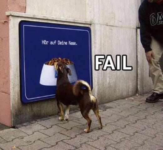 Meatless Monday: Fail