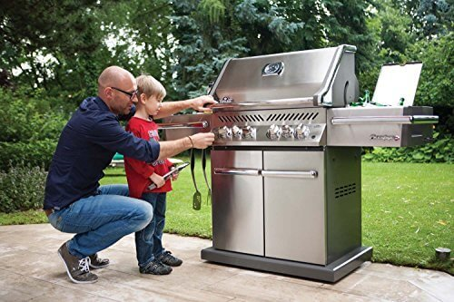 Napoleon Grills Prestige Pro 500 Natural Gas Grill, Stainless Steel