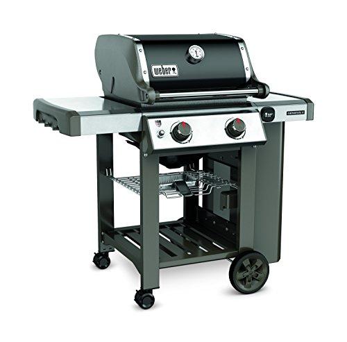 Weber 60010001 Genesis II E-210 Liquid Propane Grill