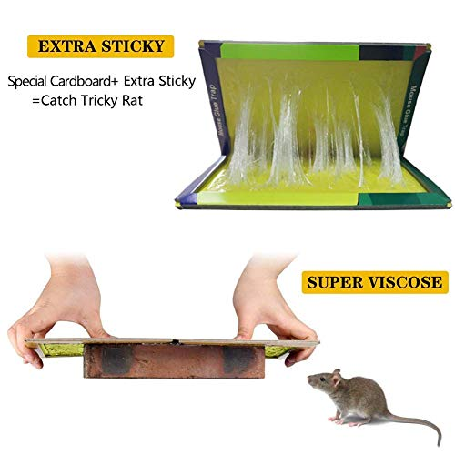 Mouse Glue Traps, Rat Glue Board, 5 Pack Extra Large Sticky Rat Glue Traps, Peanut Butter Scented Glue Traps for Mice, Perfect Use for Indoor and Outdoor