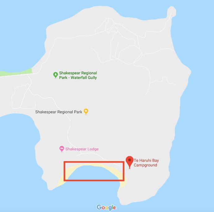 ▲Te Haruhi Bay 抓取COCKLES地點