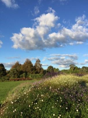 ▲Auckland Botanic Gardens