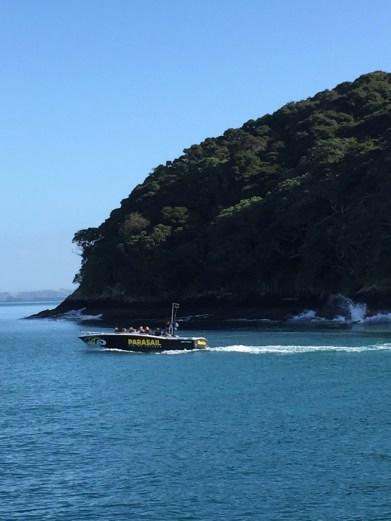 Bay of Islands Cruises