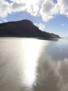 Mangawhai Cliffs Walkway